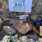 Festival Posidonia